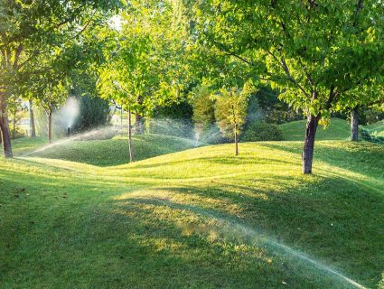 Sprinklers watering grass and trees