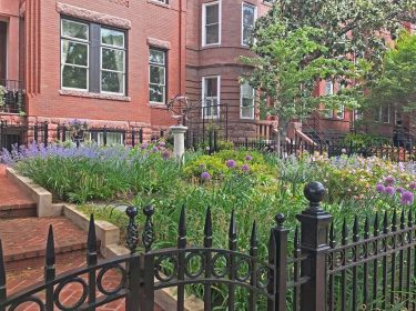 A yard enclosed with an iron fence containing colorful shrubs