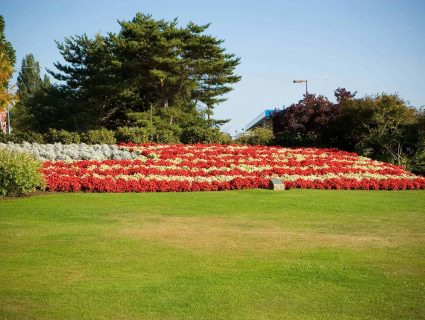 An large, outdoor arrangement of flowers arranged to look like the American flag